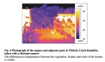 Buildings and vegetation temperature comparison